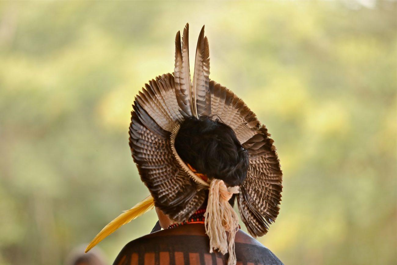 Genocídio indígena